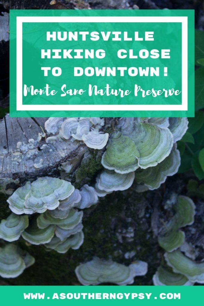 Hiking in Huntsville at Monte Sano Nature Preserve