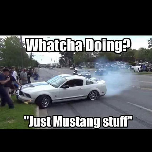 Funny Car Accident Quotes: 17 Best Images About Mustang Crash Memes On Pinterest