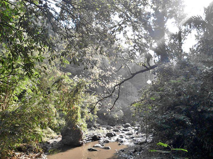 Sisi lain di Curug Dago yang melihatkan indahnya alam Bandung (Dok. Pribadi)