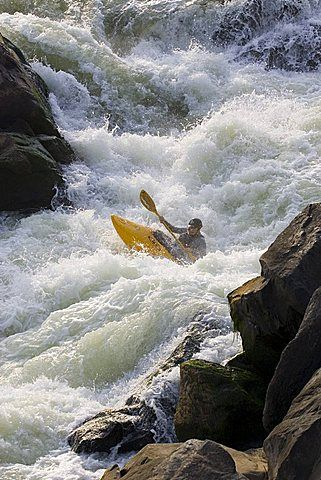 White water kayaker paddles through big rapids, Potomac River, Maryland and Virginia