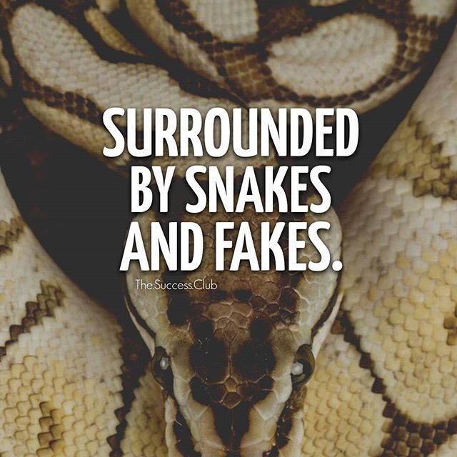 In a world full of snakes and fakes always be careful