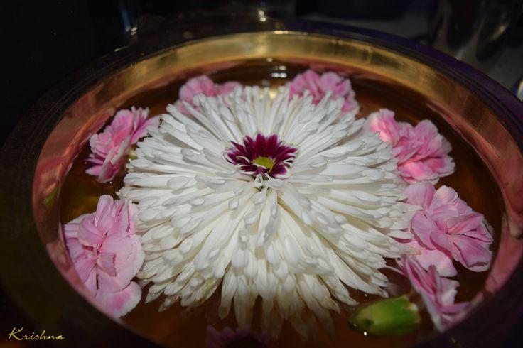 Effortless beauty here at Krishna Restaurant... #krishnahayes #krishnalondon #flower #decoration #beauty