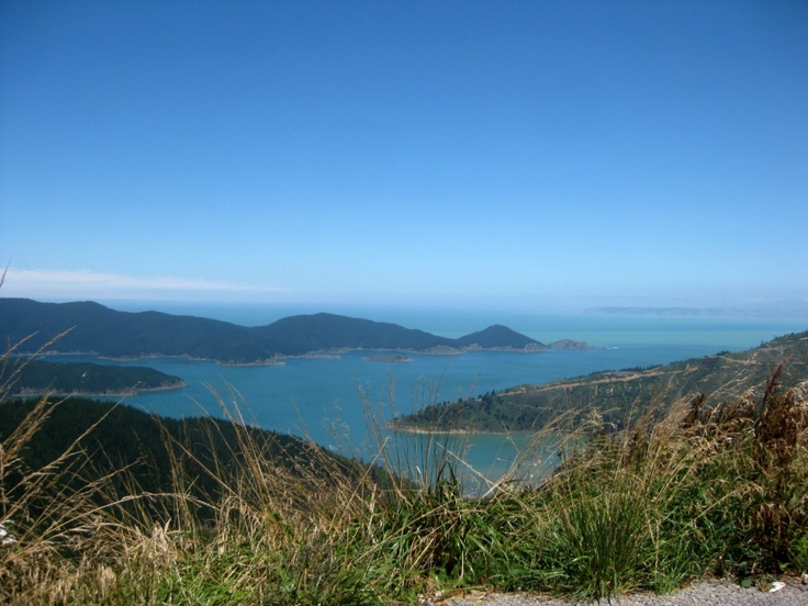 Picton and the Marlborough Sounds- Queen Charlotte Sound