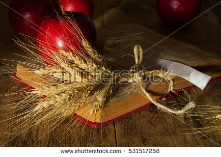 red apples and ears of wheat on the open book