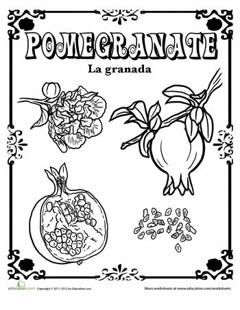 Worksheets: Pomegranate in Spanish