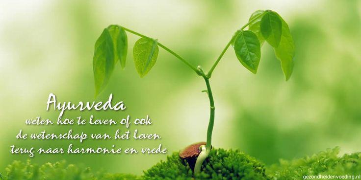 Ayurveda, weten hoe te leven Ayurveda is een hindoeïstische gezondheidsleer en betekent letterlijk 'wetenschap van het leven'. Ayurveda is de meest bekende traditionele Indiase gezondheidsleer. Maar er zijn er meer, zo is er ook nog Unani, gebaseerd op klassieke Griekse ideeën, en Siddha uit de pre-vedische D... - http://gezondheidenvoeding.nl/voeding-gezondheid/holistisch/ayurveda-weten-hoe-te-leven/