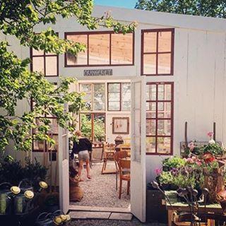 Inga planer idag, Nationaldagen? Då kan vi tipsa om att fantastiska @leegotvik som spelar på @primagotland idag klockan tolv. Passa på att njuta av (ekologisk) fika i deras fina nybyggda orangeri!  #gotlandstips #gotland #fårösund #primagård #ekologiskt #livemusic #kafe #butik