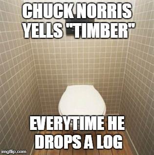 Chuck Norris Yells Timber
