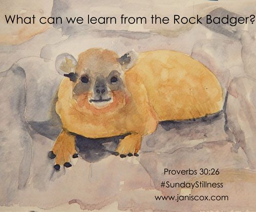 Find out what can be learned from a rock badger in Scripture. Join us at Sunday Stillness.