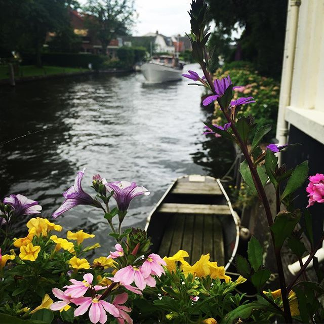 Scouting for a #meetingvenue today, and waiting at a #drawbridge in a tiny #dutchvillage isn't bad at all with this view!  #vecht #vreeland #dutch #netherlands #river #riverviews #flowers #boats #boating