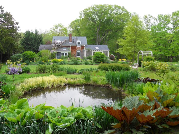 Farm pond farm pond landscape design pinterest for Pond landscape