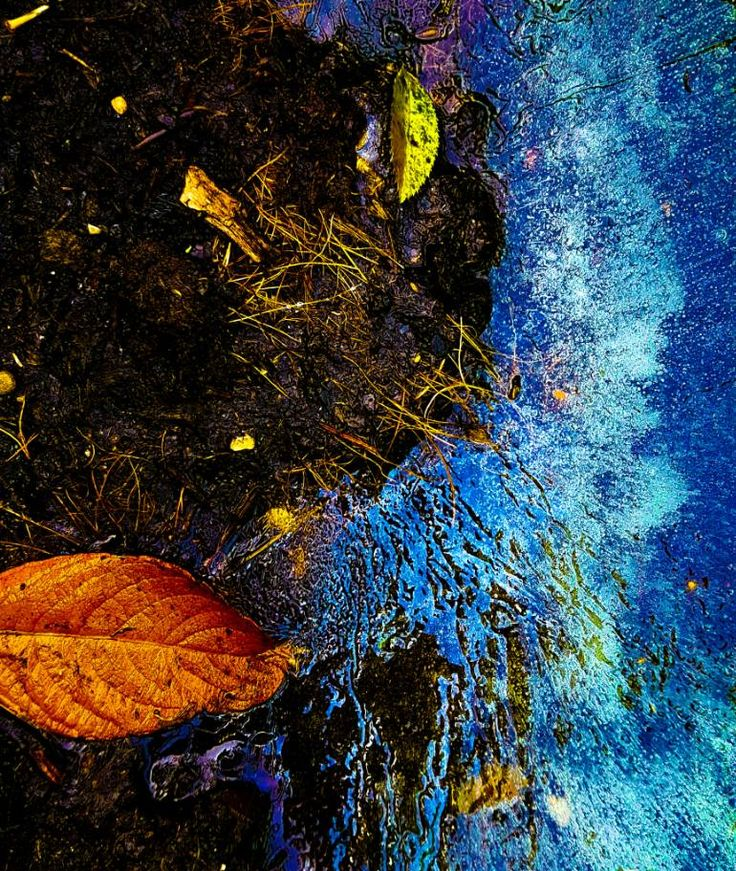 "Saatchi Art Artist photo philo; Photography, ""alkaline"" #art"