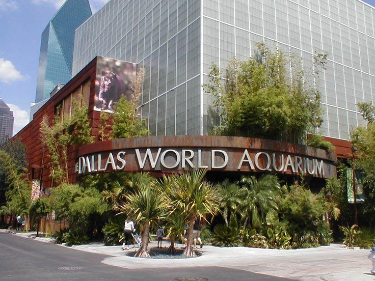 Dallas World Aquarium is a multistory wildlife habit perfect for a nature adventure in Texas.