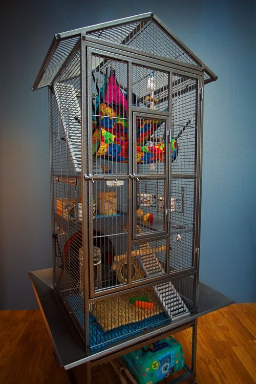 This is a bird cage turned rat cage! Ferrets, rats, chinchillas ect. This is AMAZING!
