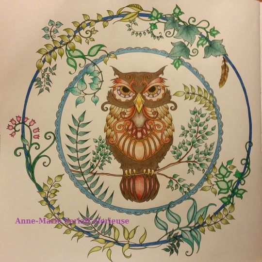 """An intricate owl from the """"Enchanted Forest"""" book. 