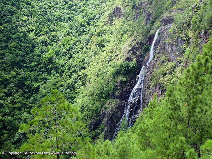 Belize:  The Thousand Foot falls in the Mountain Pine Ridge Forest Reserve.