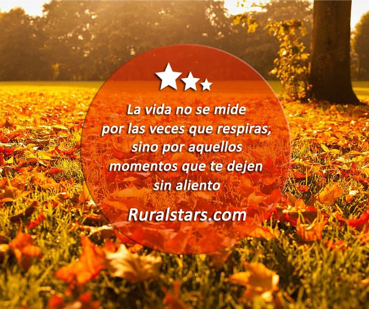 Frases para viajar, para viajeros, para descubrir el mundo, la naturaleza, la cultura, tanto de España como del mundo.