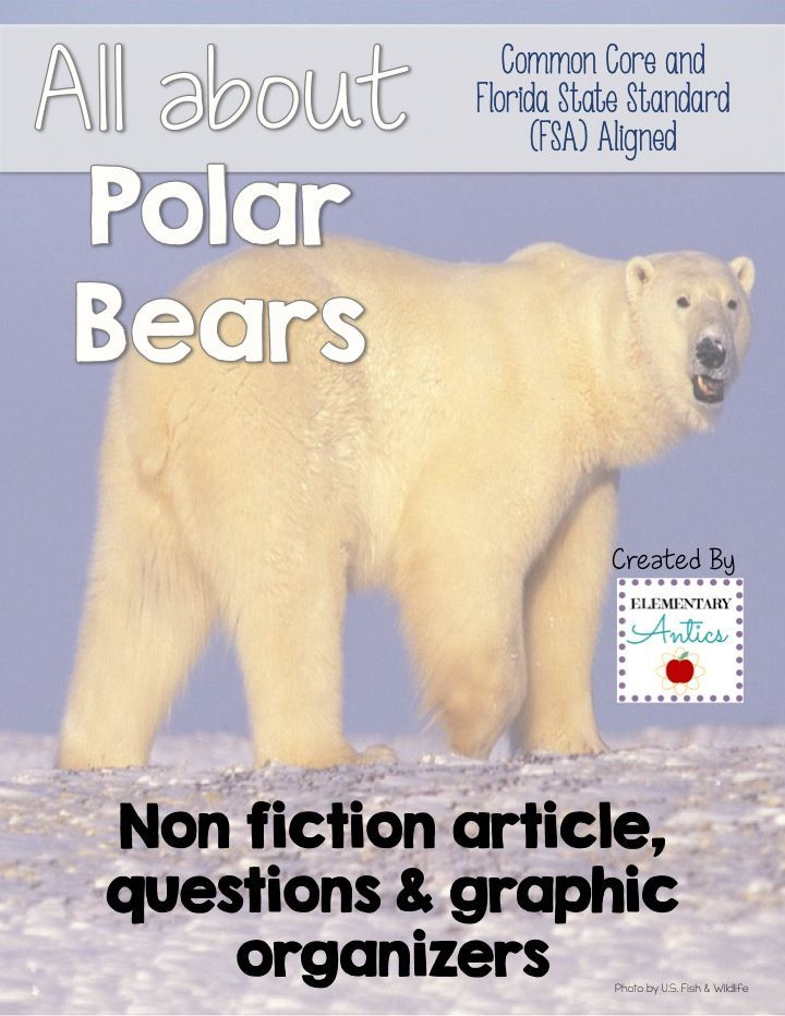 An informative article about polar bears along with 8 questions about the article, graphic organizers, and language & editing mini practice. This will be great to use in your classroom as an assessment, FSA test prep, practice or homework! #CommonCore #FS