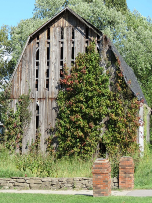 Like These Kind..Old Barn Covered In Vines