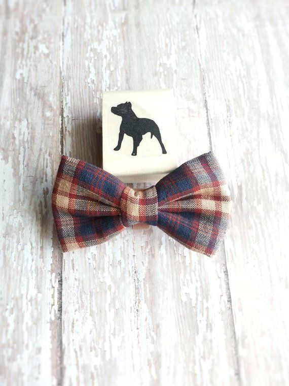 Pet Accessory Accessories Dog Bow Tie Party Birthday Rescue Park Event