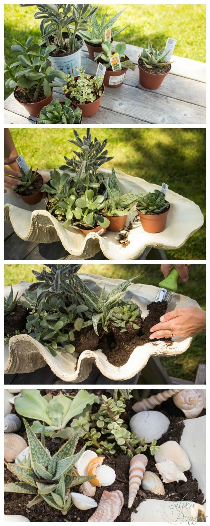 Steps for Creating a DIY Succulent Planter #sponsored