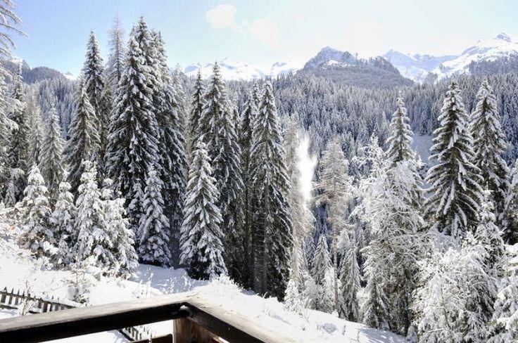 Adeptes de slow tourisme alliez votre passion du ski à la découverte de nouveaux paysages, dans un charmant chalet isolé, paisible et confrtable dans les Dolomites, Italie.