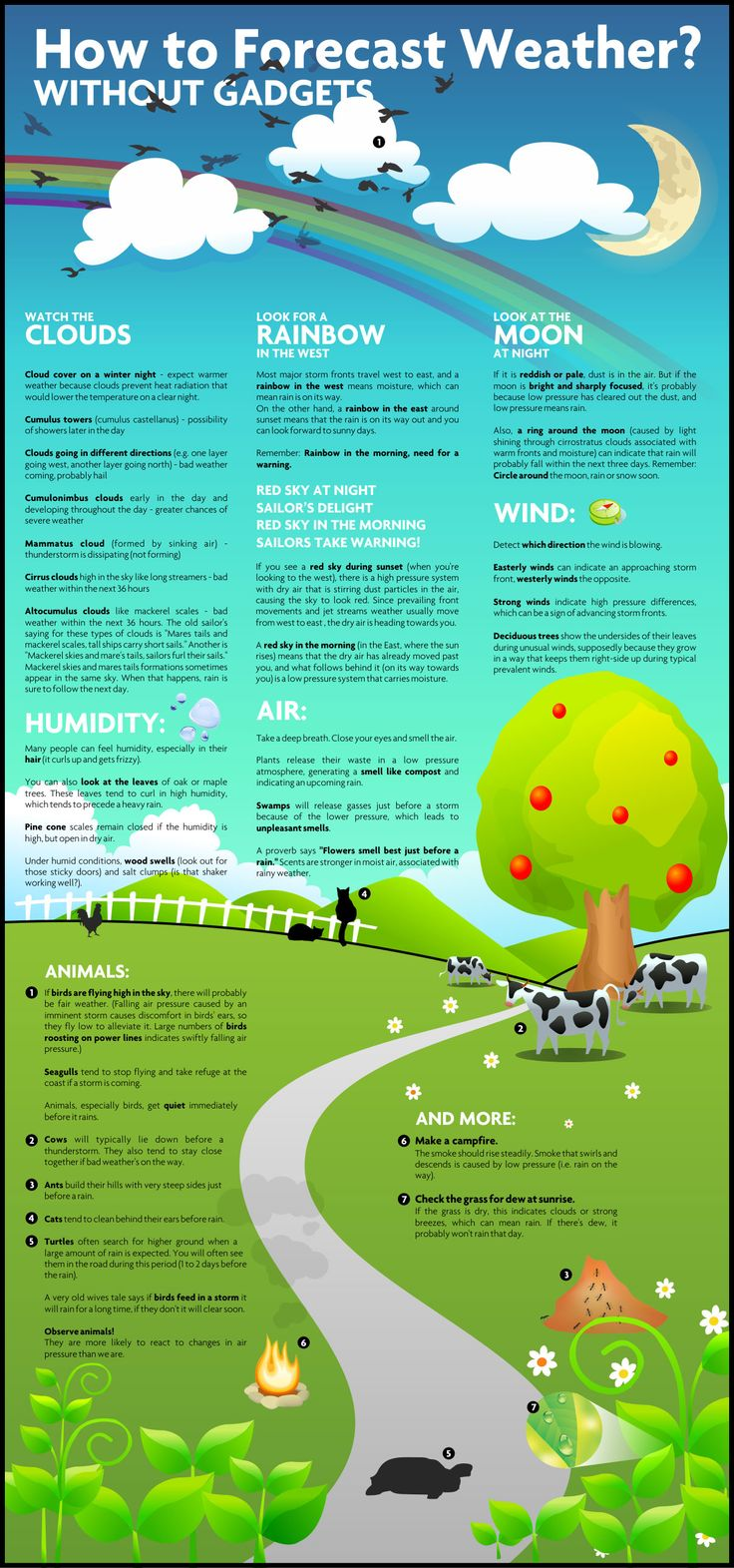 how to forecast weather #infographic