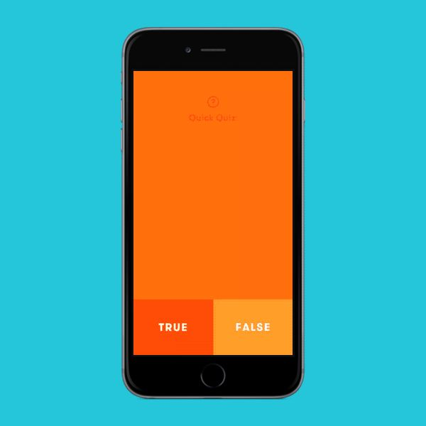 Primer True or False App | Animated User Interface Design