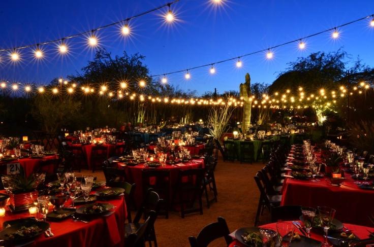 1000 images about desert botanical gardens wedding on for 702 weddings terrace