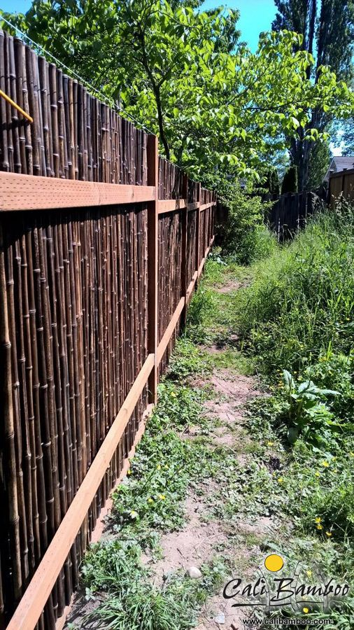 93 Best Images About Bamboo Fencing On Pinterest