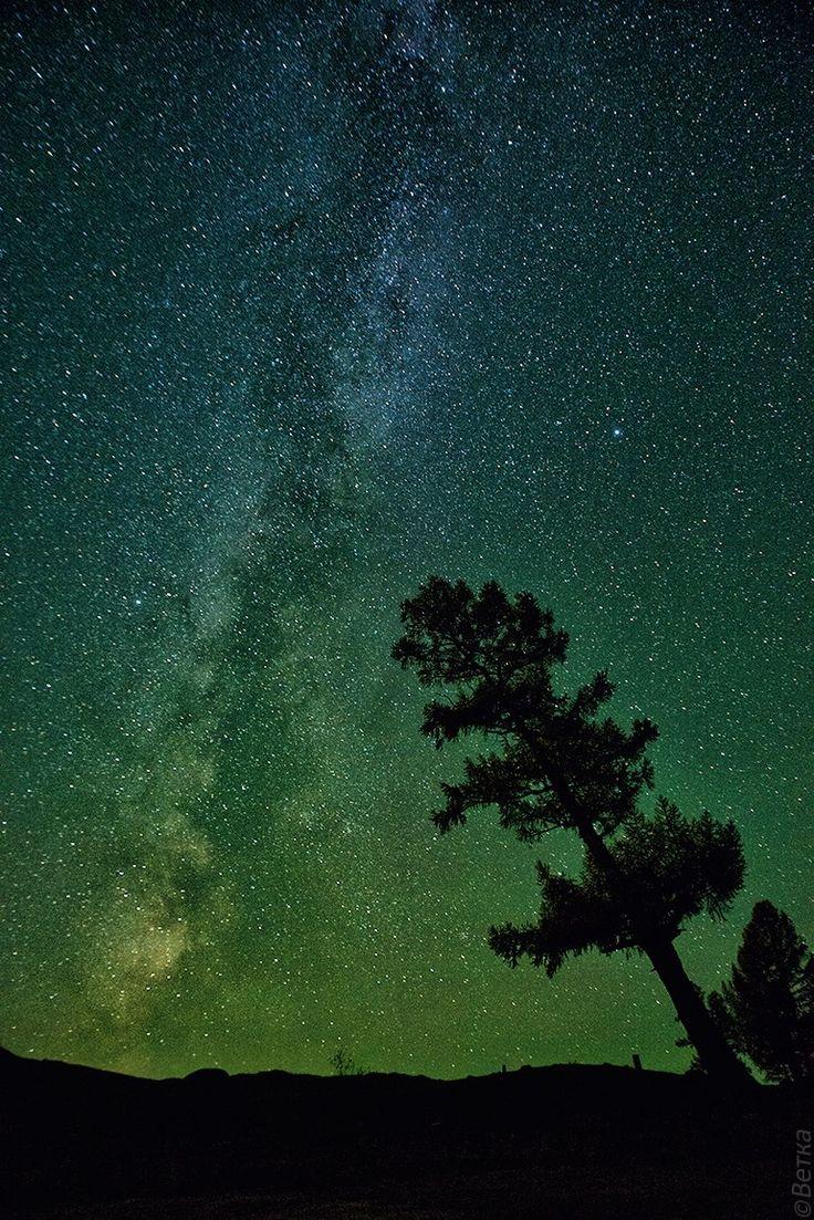 Russia. Altai Mountains. (photographer Svetlana Kasina. млечный путь... Горный Алтай. (фотограф Светлана Казина).