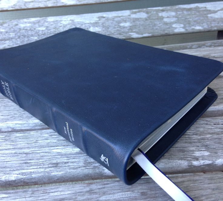 Andrews Study Bible: Andrews University Press ...