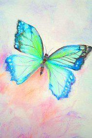 ansichtkaart 18 -vlinder- brechtje duijzer http://brechtjeduijzer.nl/