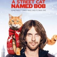 Niezwykła, poruszająca historia uzależnionego od narkotyków ulicznego grajka Jamesa Bowena, któremu w powrocie do rzeczywistości i normalnego życia pomógł... kot. Rudy, pewny siebie, chadzający (jak to kot) własnymi ścieżkami, niezależny, chimeryczny kot o najbardziej zwykłym imieniu - Bob. Ale to wszystko, co jest w nim zwykłego.