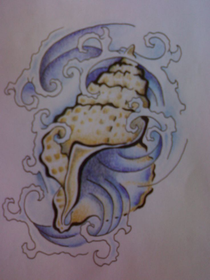 Sea Shell Tattoo Flash by ~Jameson-le-Strange on deviantART -- just the shell