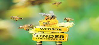 Risultati immagini per veleno d'api