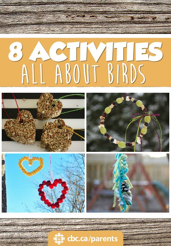 Lots of birds stay busy in the winter! Try one of these easy activities to learn more about birds: make a bird feeder or head outside for a winter bird watching walk.