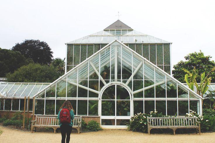 nástroj, altán, skleník, stan, pavilón, oranžerie
