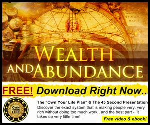 The Own Your Life Plan! Free Download available here