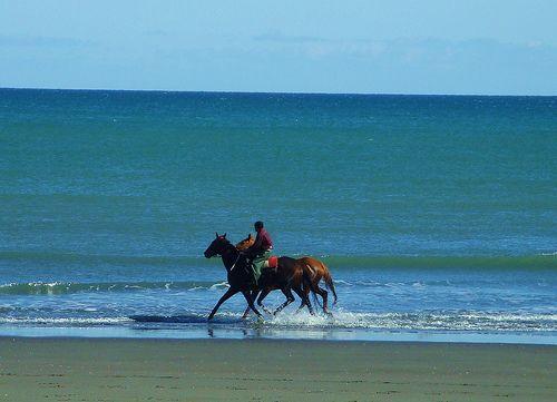 Foxton Beach, New Zealand. When I go I'm going to ride bareback. <3