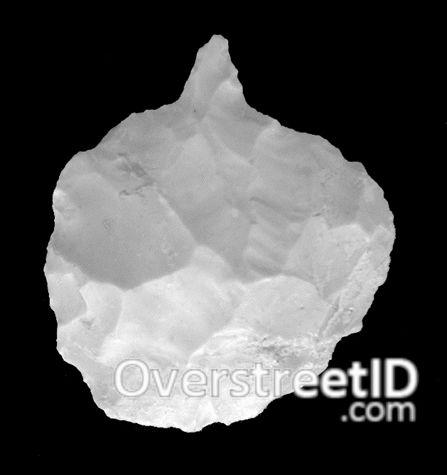 Perforator | OverstreetID.com