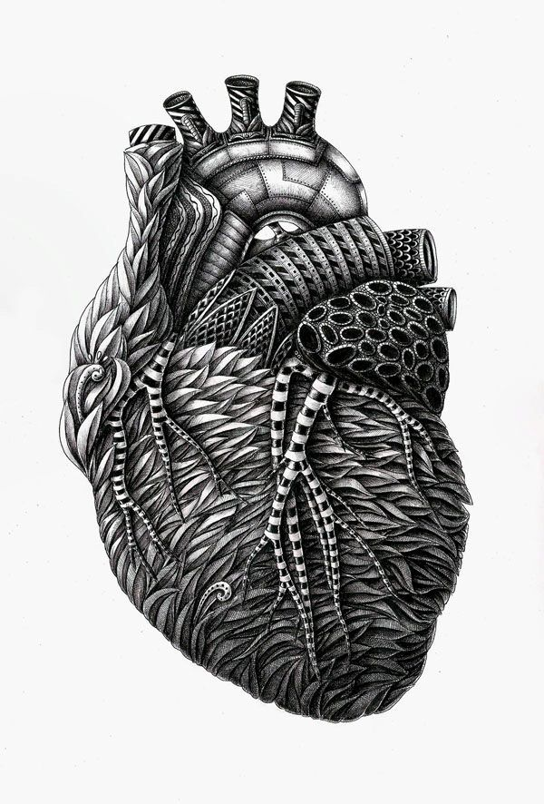 INK TERESTING -  This is an incredible ink illustration by Alex Konahin. This art is made with dip pen using black ink in this post you can watch out his work like fine line art, human anatomy art in this human anatomy he created art of human skull, lungs, heart etc all are really amazing to see.