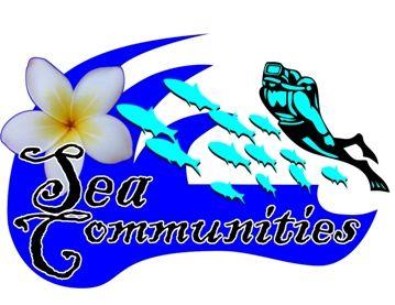 community based marine eco tourism; voluntourists; sea communities; les village, tejakula, bali, indonesia; scuba diving, snorkelling, | DiVo - Dive Voluntourism