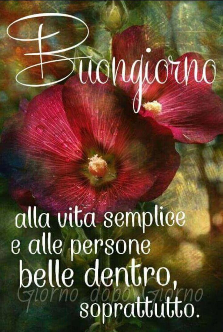32 best buongiorno buon sabato images on pinterest for Buon sabato sera frasi