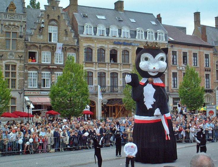 ユーラシア旅行社のベルギーツアーで行くイーペルの猫祭り
