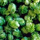 Learn about all the different styles of India Pale Ale (IPA) with our guide, including ABV, color, and popular beers brewed in this style.     https://vinepair.com/beer-101/ipa-india-pale-ale-beer-style-guide/     #homebrewing     www.homebrewing.org