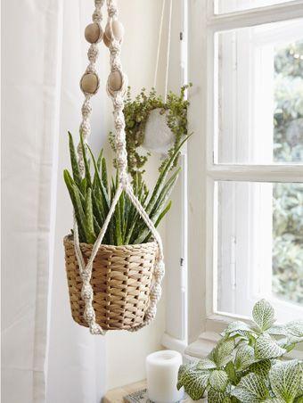 Comment cultiver un jardin à la fenêtre et réaliser une jardinière en macramé
