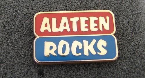 Alcoholics Anonymous Alateen Rocks Lapel Hat Vest Pin NA Recovery Al Anon | eBay