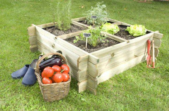 Especial: ¿Cómo tener tu propio huerto en casa? #jardin #huerto #diy