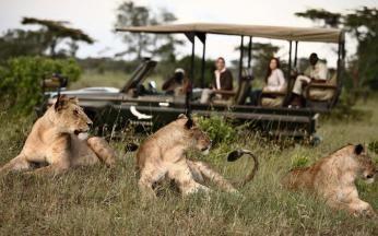 På safari i Botswana